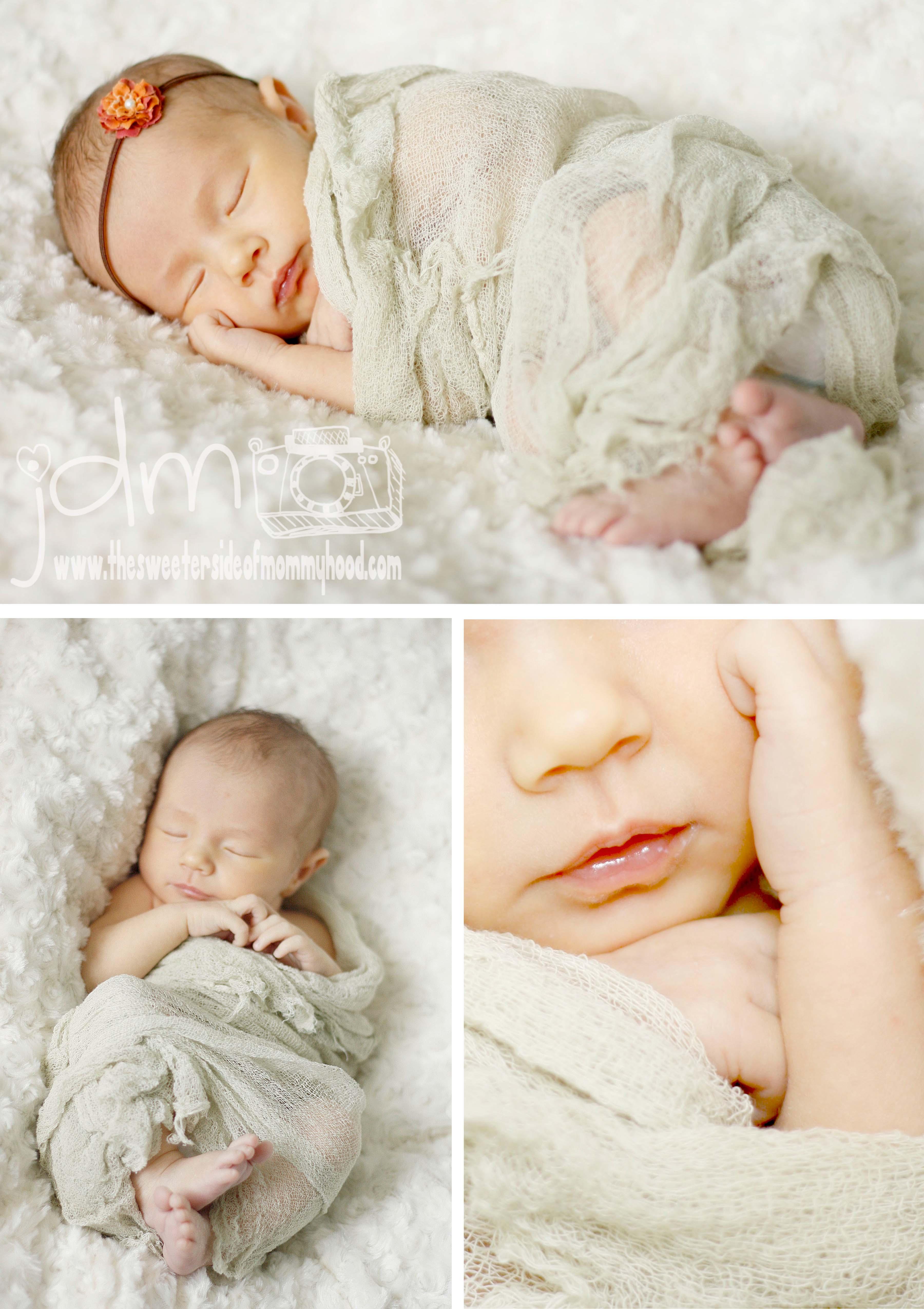 Baby Charlotte :: Pittsburgh Newborn Photographer