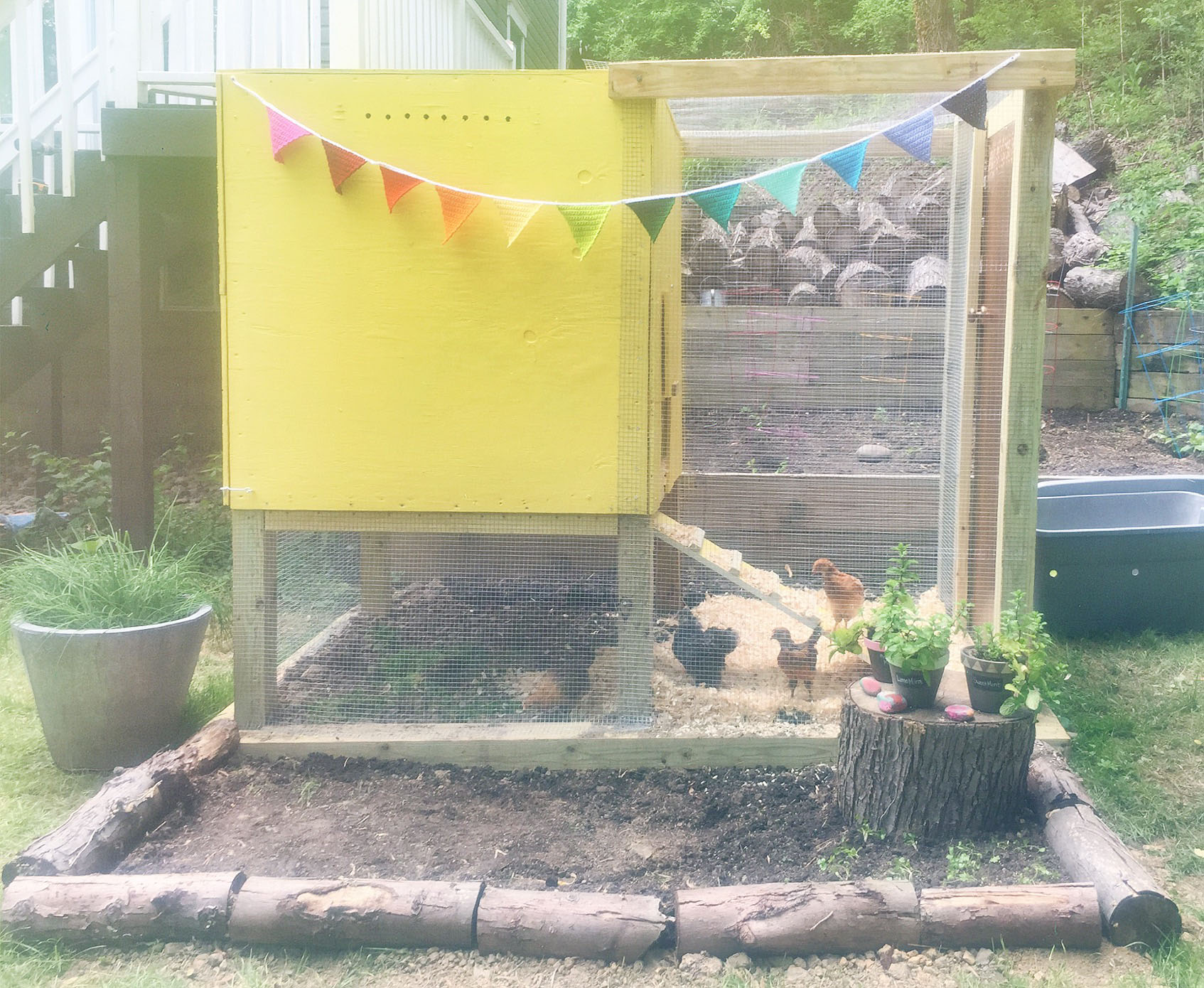 Houston, We Have a Chicken Coop!