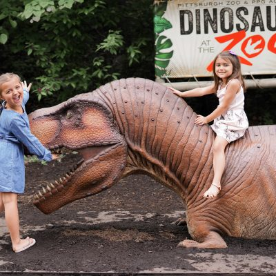 Pittsburgh Zoo and PPG Aquarium: Dinosaurs At The Zoo!