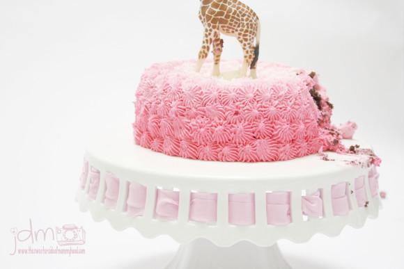 Cake Smash 6