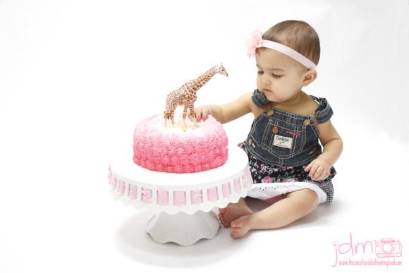 Cake smash for fb