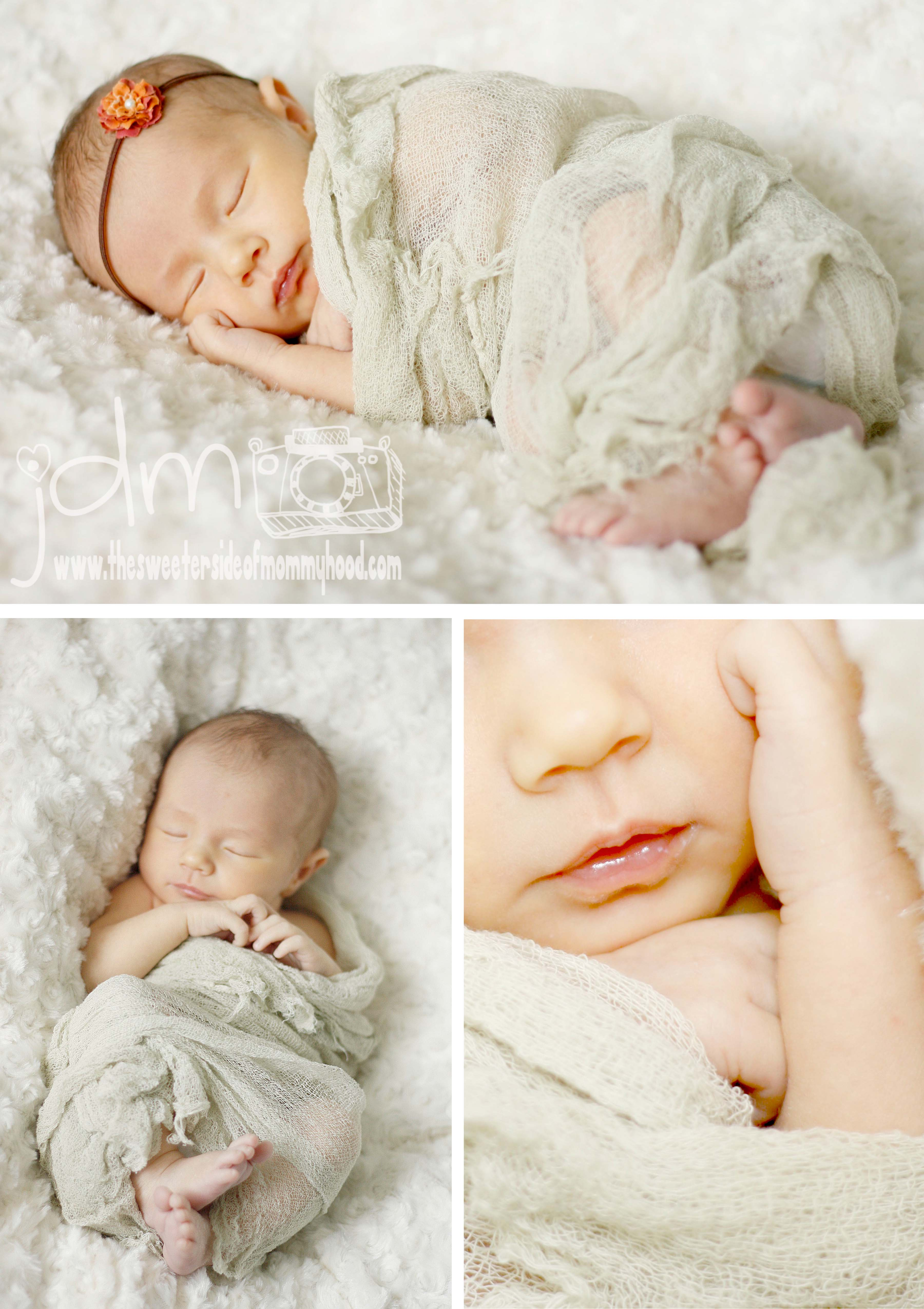 Baby Charlotte :: Pittsburgh Newborn Photographer