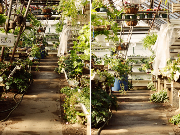 garden post 2