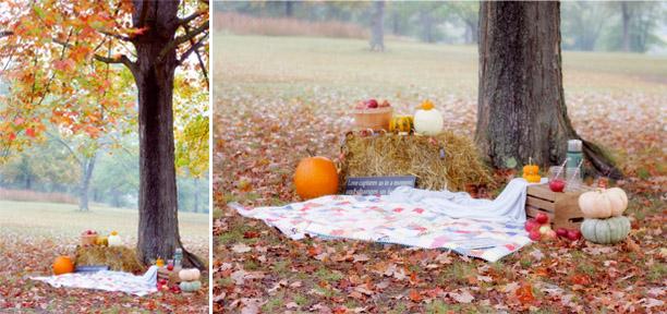 fall setup