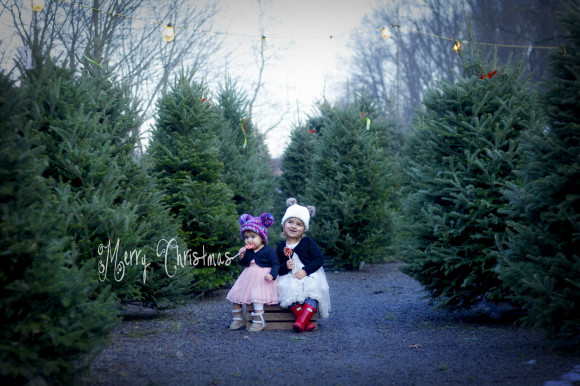 FINAL Christmas Card 2