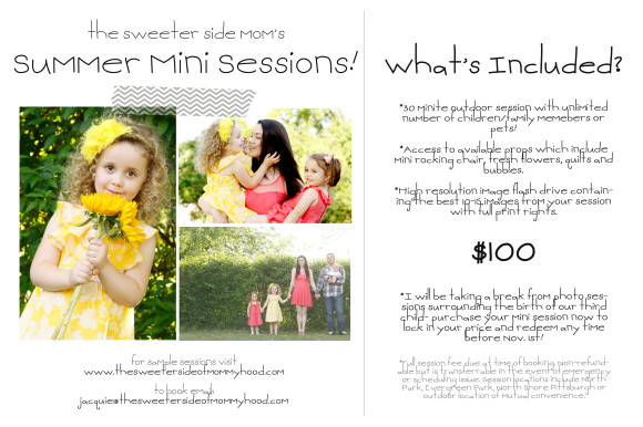 Summer Mini Session Postcard