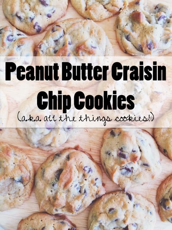 PB Craisin Chip Cookies008