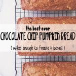 The Best Ever Chocolate Chip Pumpkin Bread