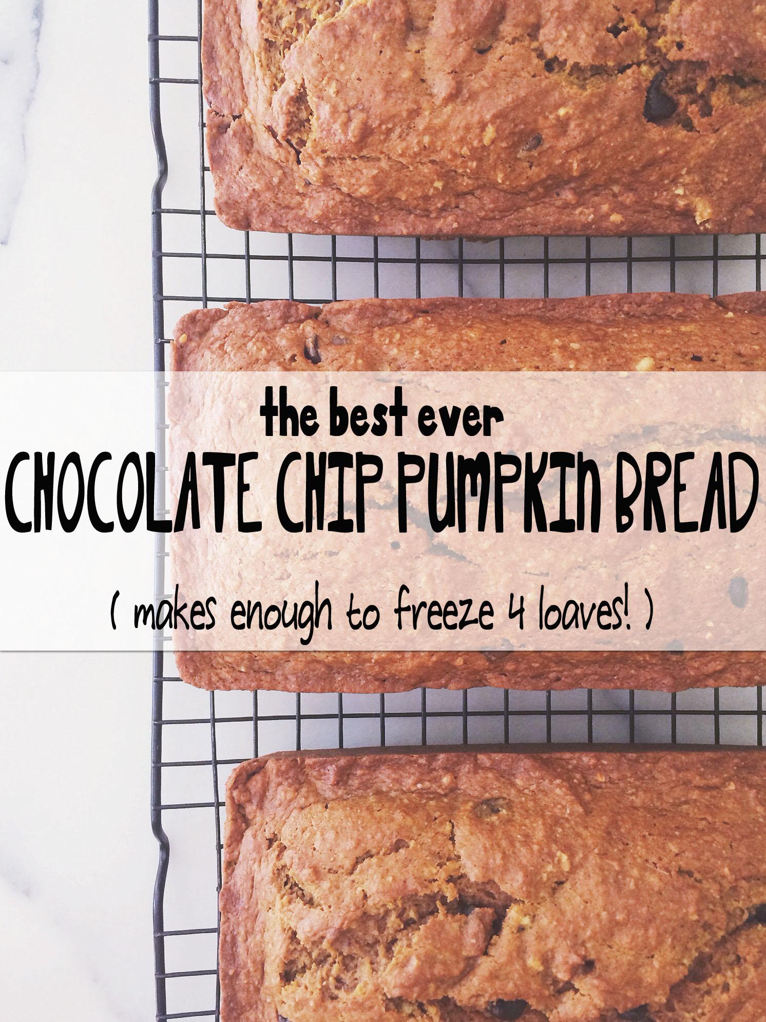 The Best Ever Chocolate Chip Pumpkin Bread