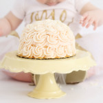 Ella's Is One! Pittsburgh Smash Cake Photographer