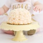 Ella's Is One! Pittsburgh Smash Cake Photographer