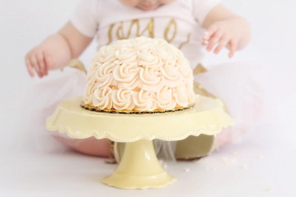 Ellas First Birthday24