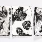 Leaf Printing Monoprint Process Art Lesson