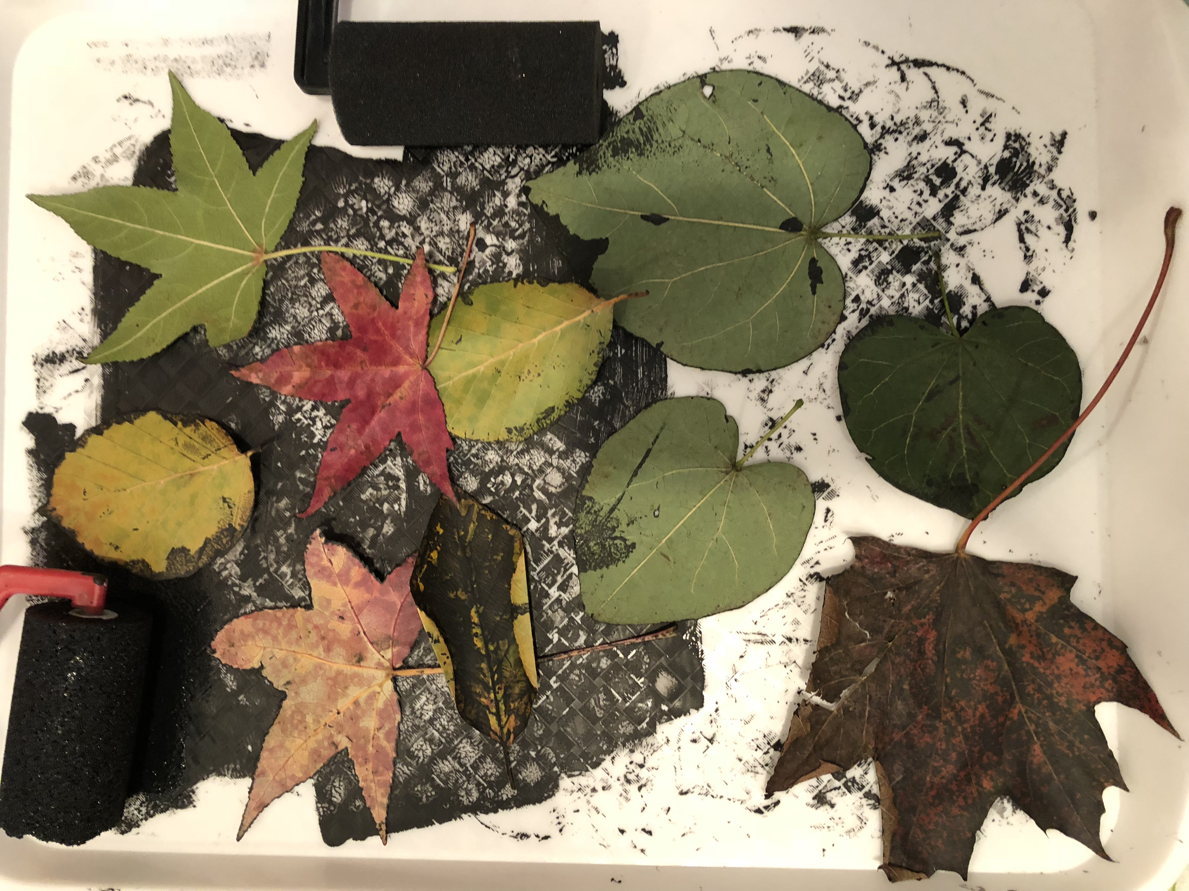 Leaf Printing Monoprint Art Lesson The Sweeter Side of Mommyhood